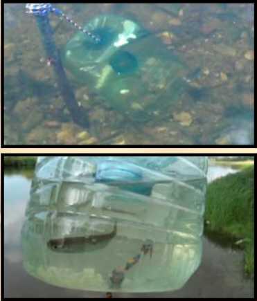 ловля рыбы на 5-и литровую бутылку