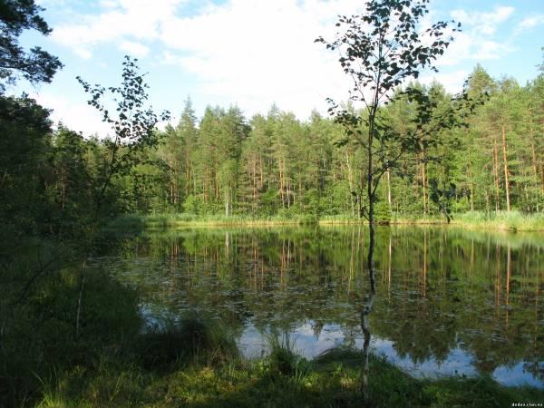озеро отдельное рыбалка