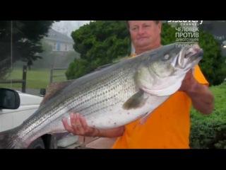 рыболовные туры из ростова